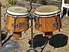 Giant_bongos